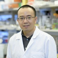 Dan Li, Research Fellow