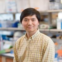 Bo Liu, Research Associate