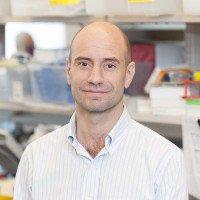 Alessandro Pastore, Senior Research Scientist