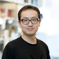Jimmy Zhao