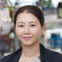 Kim Huensuk, Research Fellow