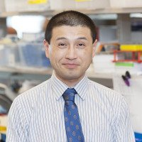 Sydney Lu, Research Fellow