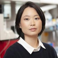 Karen Chu