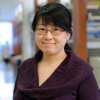 Na Yin, PhD