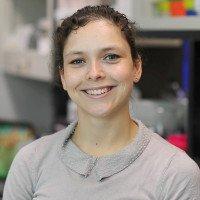 Hollie Pegram, PhD