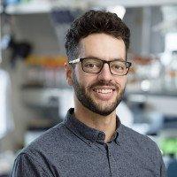 Nestor Saiz Arenales, PhD