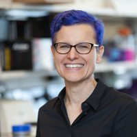 Gretchen Diehl, PhD
