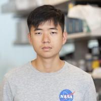 Alvin Wang
