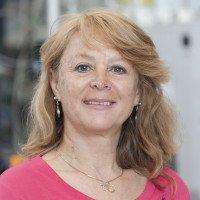 Nancy Arango