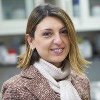 Eirini Papapetrou, MD, PhD
