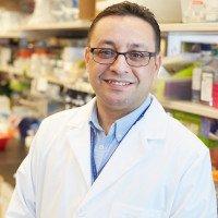 Taha Merghoub, PhD