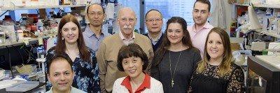 Gavril Pasternak Lab Group