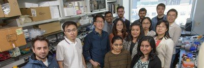 The Eric Lai Lab