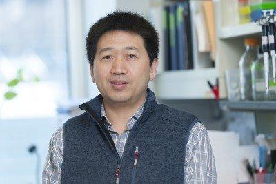 Songhai Shi, PhD