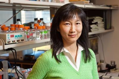 Emily H. Cheng, MD, PhD
