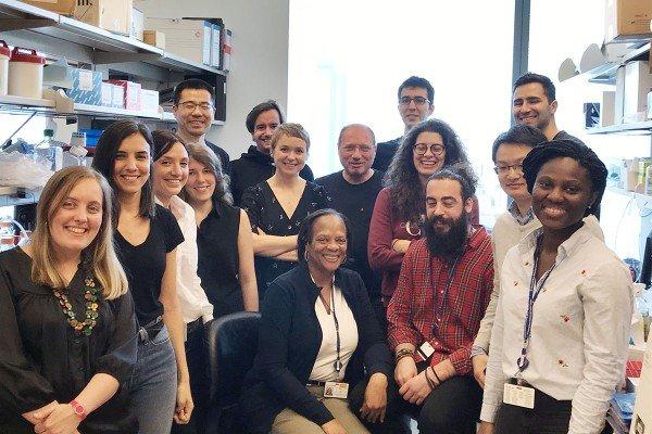 Frederic Geissmann Lab Group