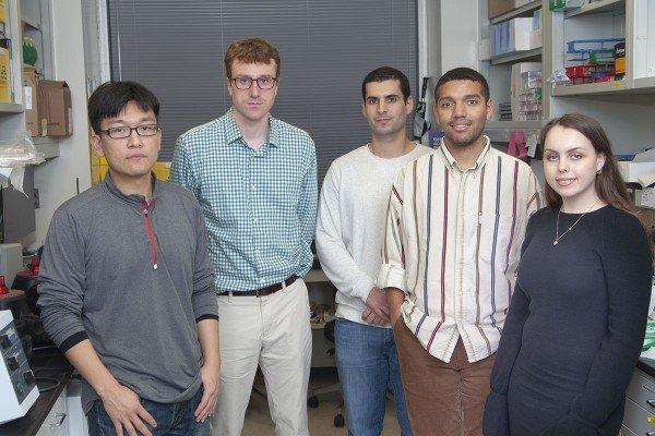 Hite Lab Group