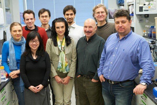 Dimitar Nikolov Lab Group