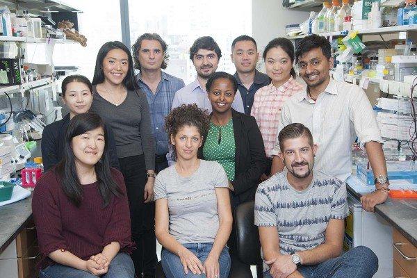 The Andrea Ventura Lab
