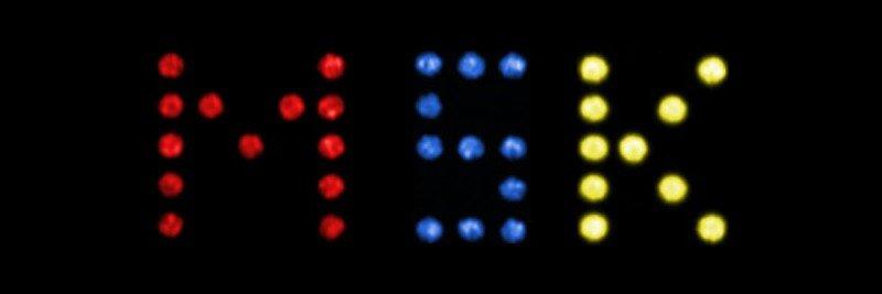 MSK light bright image