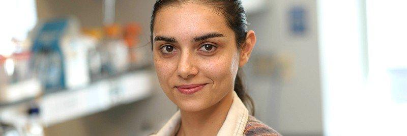 Haniya Rehman