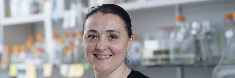 Mihaela-Carmen Sandu (Unciuleac), PhD