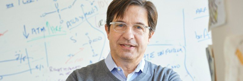 Pictured: John H.J. Petrini, Molecular Biologist