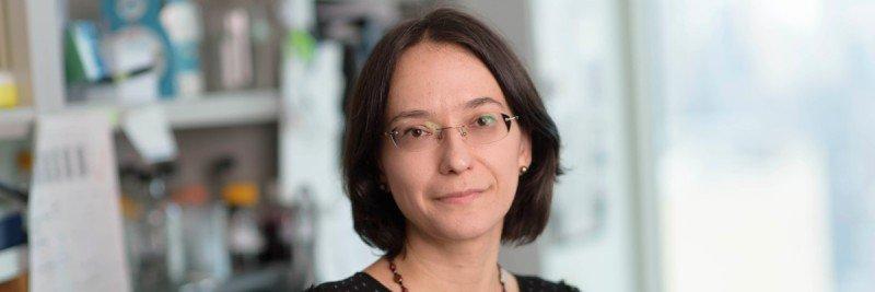 Tatiana Omelchenko