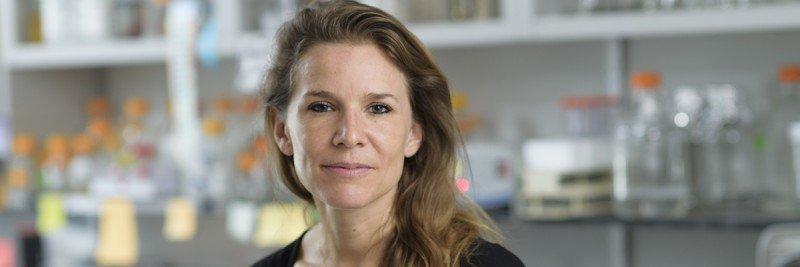 Barbara Remus, PhD